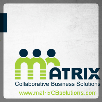 Matrix Business Solutions Search Engine Optimization