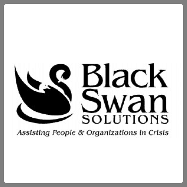Adwords Management for Black Swan Solutions