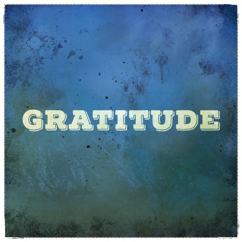Optimizing Gratitude Cuppa SEO Web Design