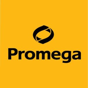 SEO & User Experience for Promega