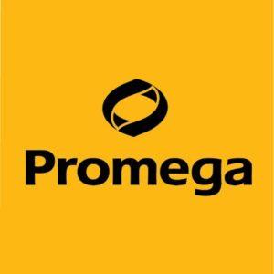 SEO & User Experience for Promega