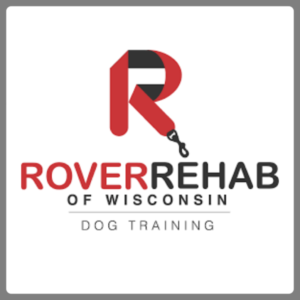 Search Engine Optimization for Rover Rehab
