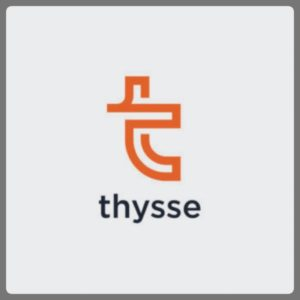 Website Assessment & Adwords for Thysse
