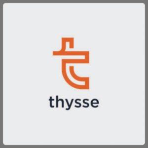 Website Assessment & Adwords for Thysse